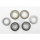 Steering Stem Bearing Kits - 22-1011