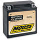 Non-Spillable 12-Volt Battery - 2113-0050