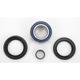Front Wheel Bearing Kit - A25-1005