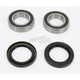 Rear Wheel Bearing Kit - PWRWK-Y09-000