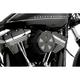 Black Skull Cap Crown Air Cleaner Insert - 71019