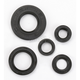 Oil Seal Set - 0935-0042