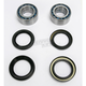 Front Wheel Bearing Kit - PWFWK-A01-542