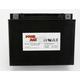 Maintenance Free 12-Volt Battery - GTX24HLBS