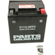 AGM Maintenance Free 12-Volt Battery - 21130094