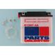Standard 12-Volt Battery - R12N74A