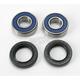 Wheel Bearing Kit for Talon Hub - 0215-0229