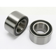 Rear Wheel Bearing Kit - PWRWK-P02-543