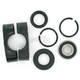 Steering Stem Bearing Kit - PWSSK-Y06-450