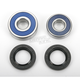 Rear Wheel Bearing Kit - A25-1214