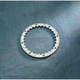 Clutch Spring Plate - 095763UP1