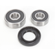 Rear Wheel Bearing Kit - 301-0064
