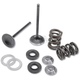 Intake Only Conversion Spring Kits - 96-96070
