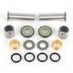 Swingarm Bearing Kit - PWSAK-S17-400
