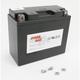 Maintenance Free 12-Volt Battery - GT12B4