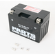 AGM Maintenance Free 12-Volt Battery - 2113-0219