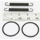 Pipe Spring/O-Ring Kit - 011307