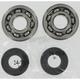 Crank Bearing/Seal Kit - A24-1006