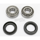 Wheel Bearing and Seal Kit - A251001
