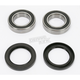Rear Wheel Bearing Kit - PWRWK-Y10-000