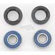 Wheel Bearing Kit - A25-1009