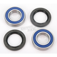 Rear Wheel Bearing Kit - A25-1273