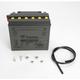 Yumicron High Powered 12-Volt Battery - YB16-B