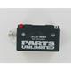 AGM Maintenance Free 12-Volt Battery - 21130089
