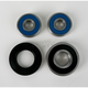 Rear Wheel Bearing and Seal Kit - PWRWS-S02-000