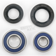 Front Wheel Bearing Kit - A25-1042