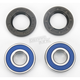 Wheel Bearing and Seal Kit - 25-1379