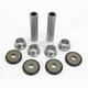 Rear Suspension Knuckle Kit - 0430-0616