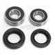 Rear Wheel Bearing Kit - 301-0135