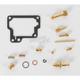 Carburetor Rebuild Kit - 1003-0221