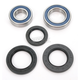 Rear Wheel Bearing Kit - A25-1134