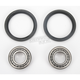 Front Wheel Bearing Kit - A25-1007