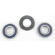 Rear Wheel Bearing Kit - A25-1322
