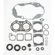 Complete Gasket Set with Oil Seals - M811812