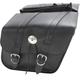 Compact Slant Saddlebags - SB70705