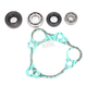 Water Pump Repair Kit - WPK0009