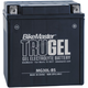 TruGel 12-Volt Battery - MG30L-BS