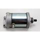 Starter Motor - 2110-0356