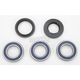 Rear Wheel Bearing Kit - A25-1034