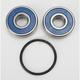 Rear Wheel Bearing and Seal Kit - PWRWS-H31-000