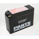 AGM Maintenance Free 12-Volt Battery - 21130217