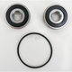 Rear Wheel Bearing and Seal Kit - PWRWS-H66-000