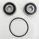 Rear Wheel Bearing and Seal Kit - PWRWS-H66-000