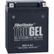 TruGel 12-Volt Battery - MG14-A2