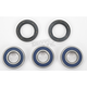 Rear Wheel Bearing Kit - A25-1243