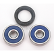 Rear Wheel Bearing Kit - A25-1300